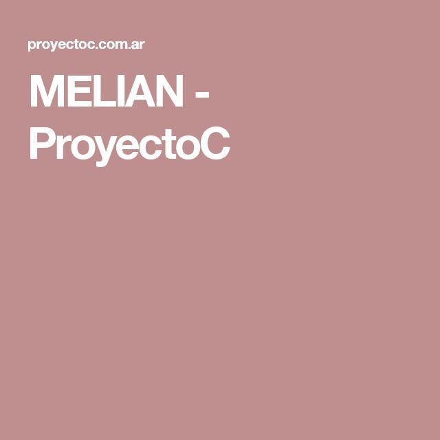 MELIAN - ProyectoC