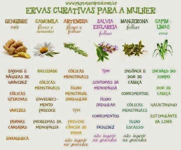 ervas curativas para a mulher