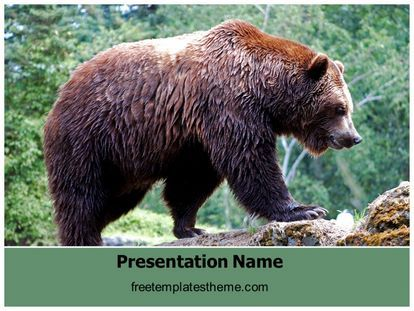 14 best free wildlife animals powerpoint ppt templates images on download free grizzly bear powerpoint template for your powerpoint toneelgroepblik Gallery