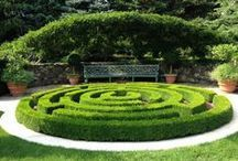 Garden of Love - Chateau de Villandry - Căutare Google