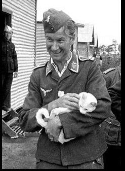 """kriegskittens: """" An inmate of Murchison prisoner-of-war camp in Australia is photographed with his pet in December 1942. Deutsche Kriegs Kitten wif Soldat! Kitler Approve. """" Fallschirmjager: LuftKatenz, I am so in Luft with this picture! A..."""
