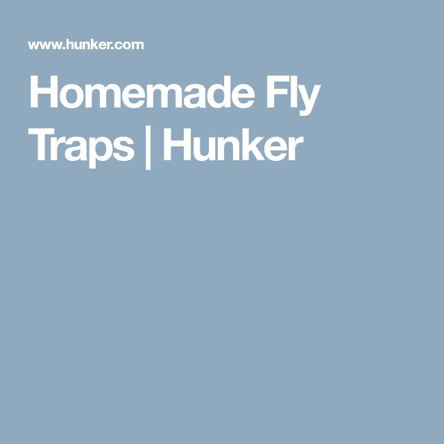 Homemade Fly Traps | Hunker