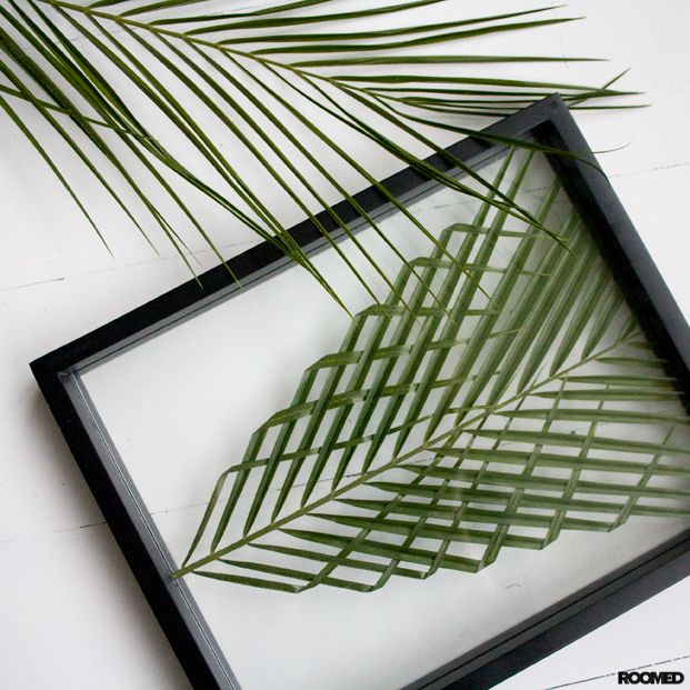 DIY: framed palm leaf. Check out our complete how-to! - Roomed