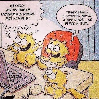 Erdil Yaşaroğlu; sahiplendirme!