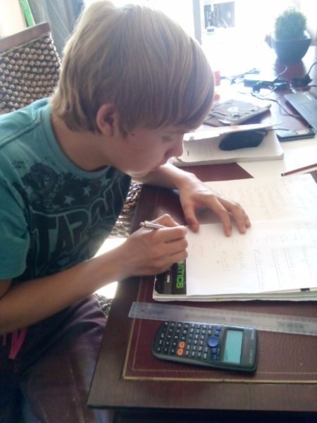 I have a Bsc Mathematics and Physics as double major i can teach your child…
