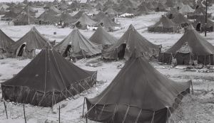 Zoltan Kluger / GPO ma'abarot, transit camps for Mizrahi Jews