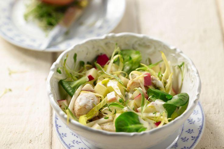 Witloof een wintergroente? Witloof smaakt ook heerlijk zomers in deze salade met gebakken kip, appel, veel kruiden en een frisse yoghurtvinaigrette.