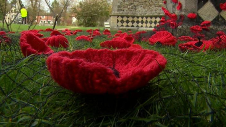Village knitters who set out to make 40 woollen poppies for Remembrance Day have now made 5,500 of them.