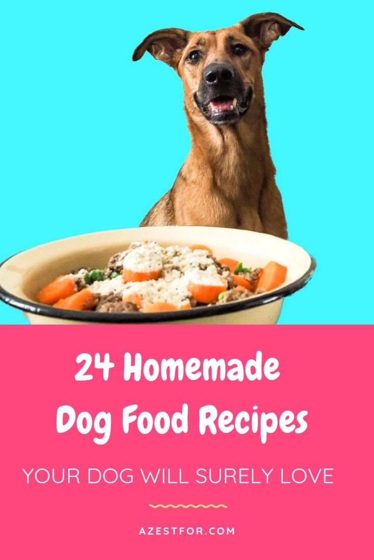 Interested In Making Your Own Homemade Dog Food That Is