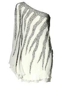 zebra one sleeve dress - bachelorette party?