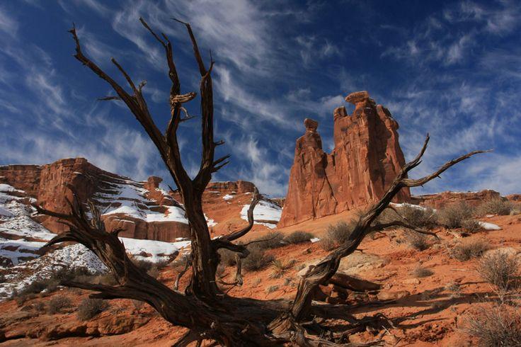https://flic.kr/p/8juvAa | Winter Gossips | A dead tree and Three Gossips after snow storm, Arches National Park, Utah.  枯れ木とスリー・ゴシップス、アーチーズ国立公園、ユタ州