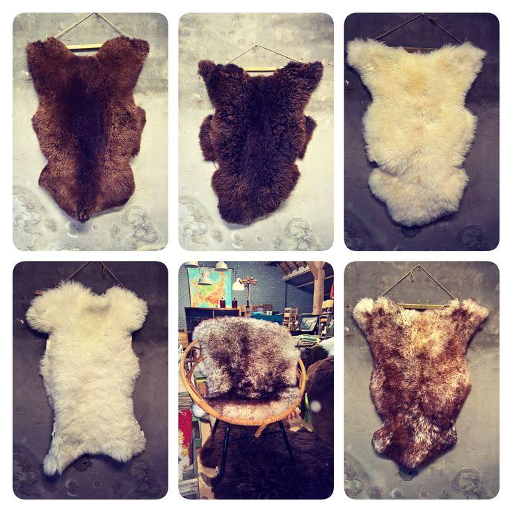 Echte schapenvachten in je interieur!! #vacht #schapenvacht #zacht #mooi #woonaccessoire #kleed www.als-nieuw.com