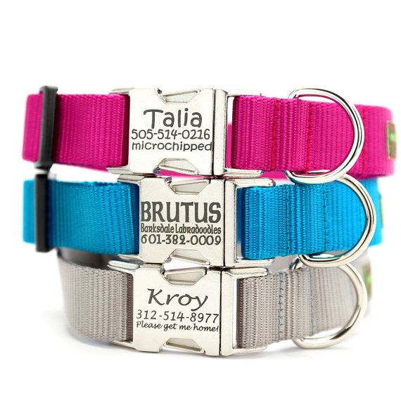 Personalized All Metal Buckle Dog Collar - Engraved with 21 Webbing Colors to Choose From