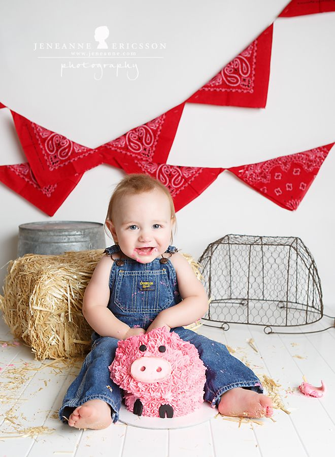 Mr. C is One! – Santa Rosa Cake Smash Photographer » Jeneanne Ericsson Photography farmer theme