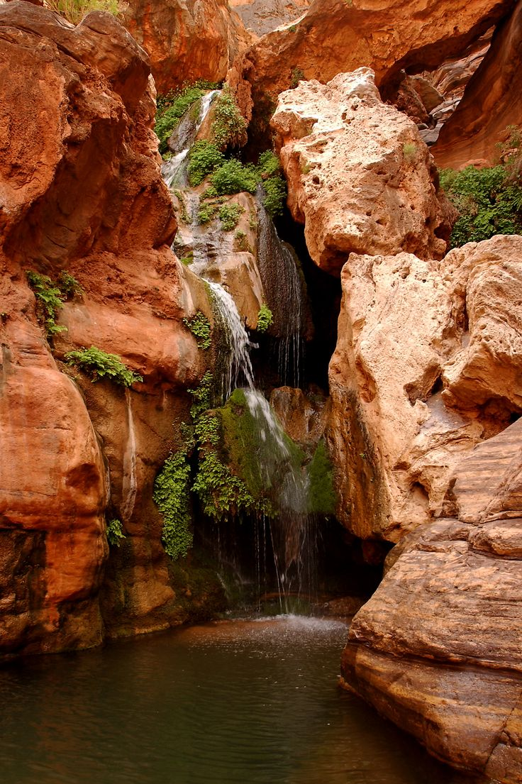 Elves Chasm | Grand Canyon Rafting | O.A.R.S.