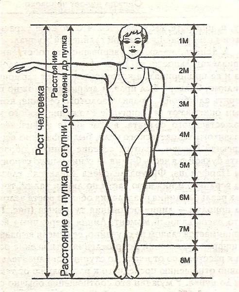 Пропорции тела человека в костюме