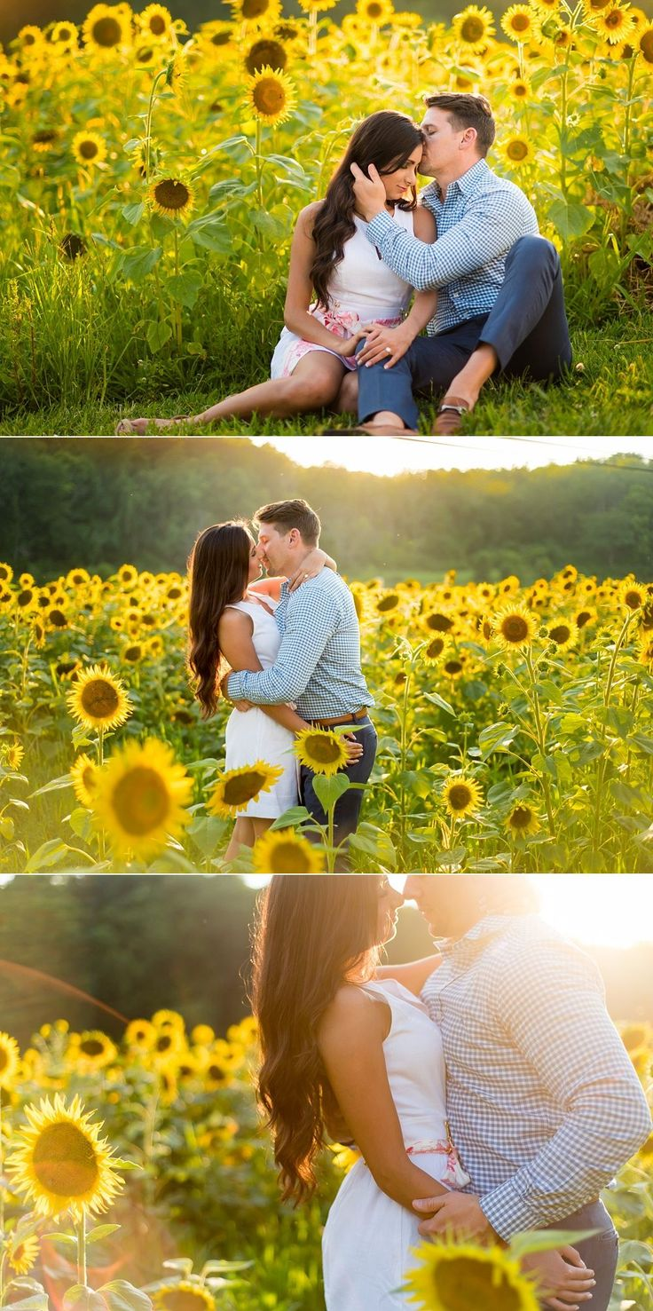 Gorgeous sunflower field engagement photos! I love all these, so pretty. Engagement photography | couples photos | sunflower field | summer engagement photos