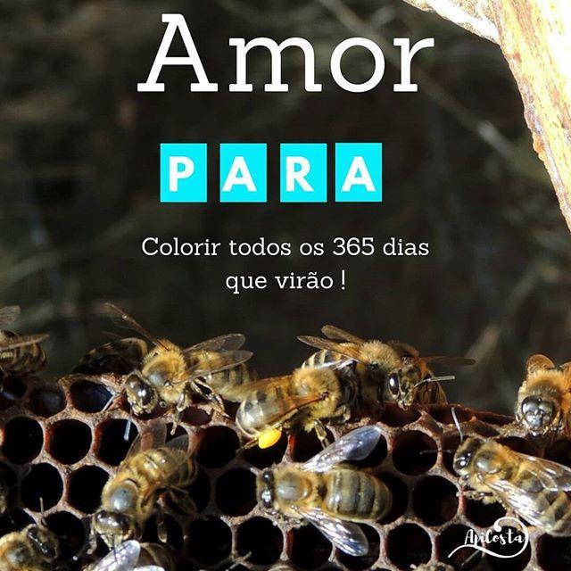 A familia apicosta deseja-lhe ... apicosta.com #apiculturanatural #abelhas #bees #beekeeping #naturalbeekeeping #mel  #Regram via @apicosta