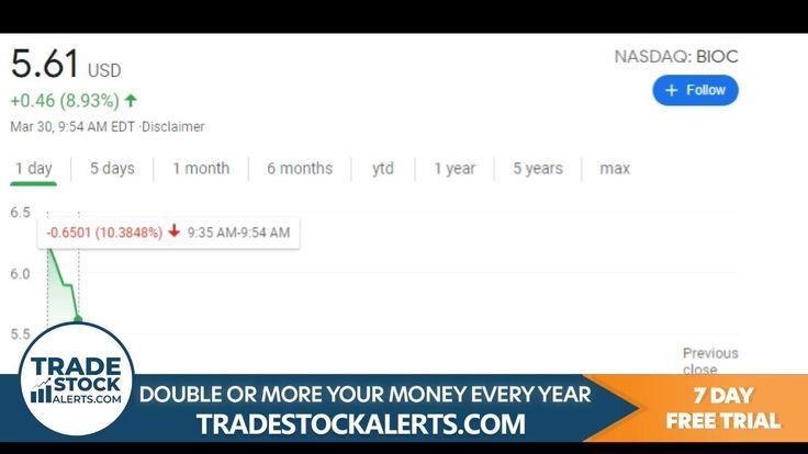 Best stock alert picking service profitable trading