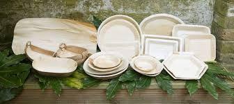 palm leaf plate - Google Search
