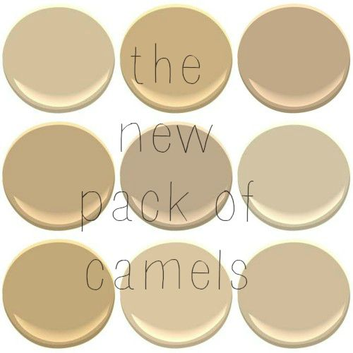Benjamin Moore Beige/Camel Colors: Blanched Almond, Bridgewater Tan, Brookline Beige, Brunswick Beige, Hillsborough Beige, Shaker Beige, Simple Pleasures, Squire Hill Bluff, and Stone House