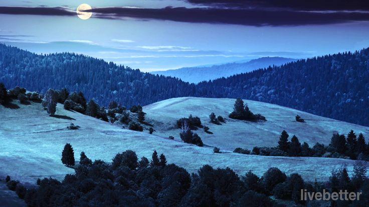 Una noche en el monte pelado - Modest Mussorgsky   Lo Mejor de la Música...