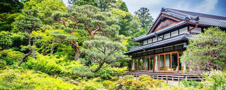 Travel to Japan, and discover the city of Nara, as part 3 of my amazing trip to Japan. Nara is