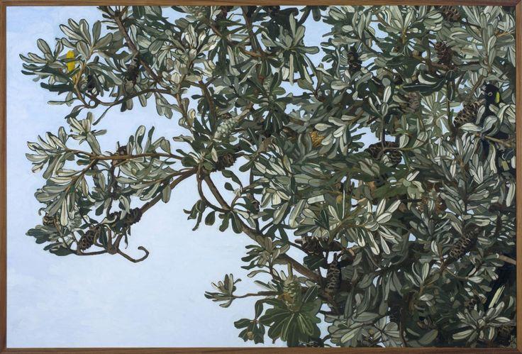 WINTER BANKSIA MARCOOLA by JUDITH SINNAMON in Stockroom atEdwina Corlette Gallery - Contemporary Art Brisbane