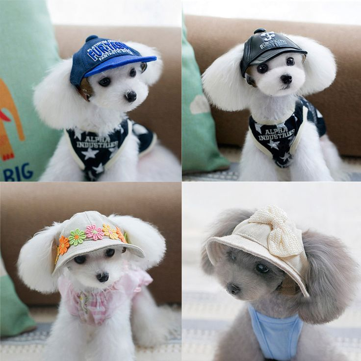 Free shipping Pet Hats Pet accessories beret Pet cap Dog hat Teddy Dog Poodle Hat hair 11Style Baseball Hat For Pet Windproof