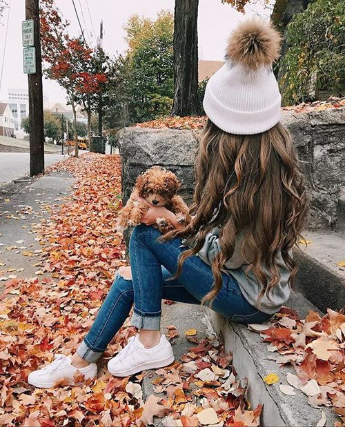 autumn, puppy, and fashion image