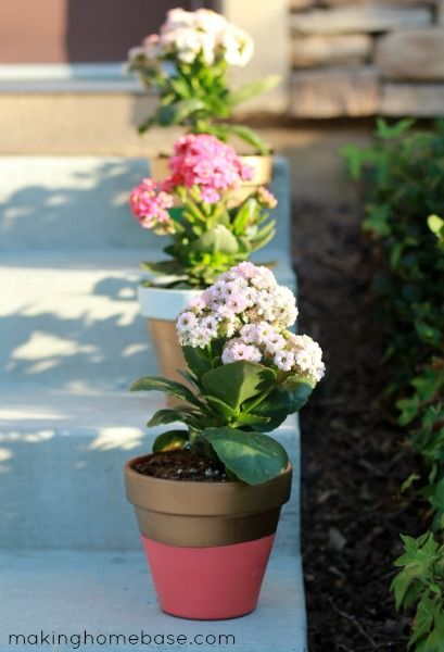 Spring Has Sprung: Painted Flower Pots
