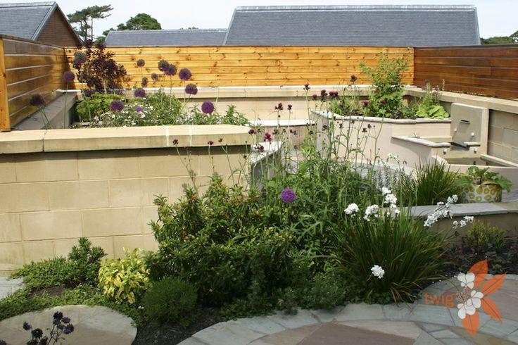 Edinburgh roof garden design living roofs pinterest for Garden design edinburgh