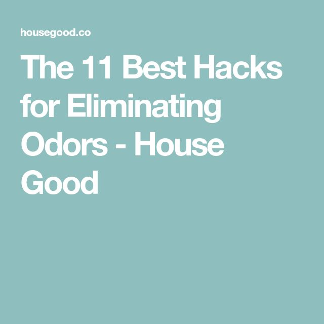 Bon The 11 Best Hacks For Eliminating Odors
