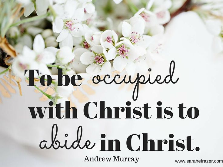 Abide in christ; Andrew Murrary; The True Vine; Abide; Giveaway