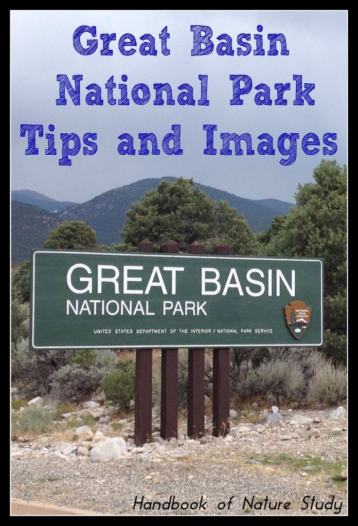 Great Basin National Park tips and images {from @harmonyfinearts}