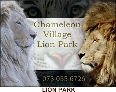 Welcome to Chameleon Village Visit www.weloveharties.co.za