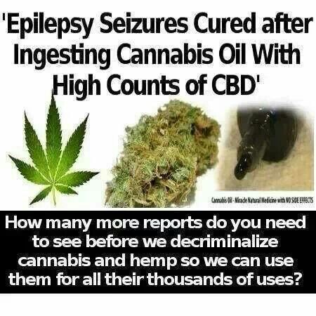 Seriously people, open your eyes and see all of the great benefits of cannabis.
