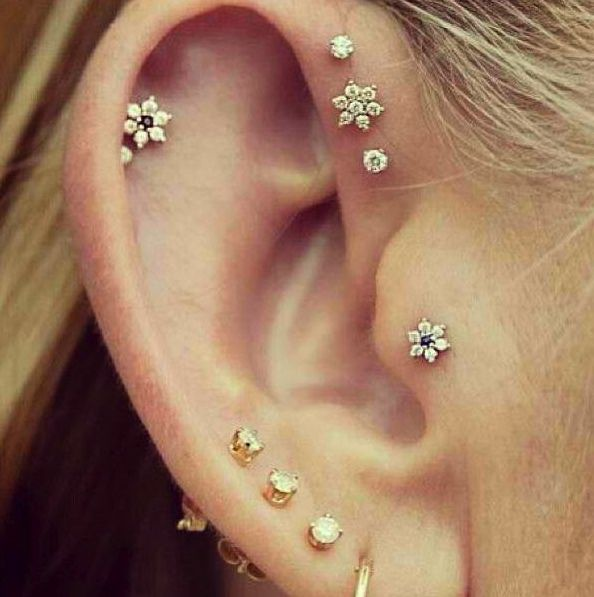 Does anyone know where to buy these tiny flower earrings? The one on the tragus and at the top inside with the blue centers. Gorgeous!