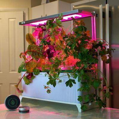 Xl Indoor Smart Garden Home Garden Urbanplant Smart 400 x 300