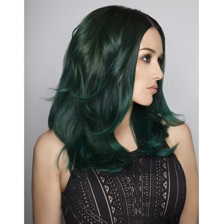 213 Best Hair Images On Pinterest Hair Color Colourful Hair And