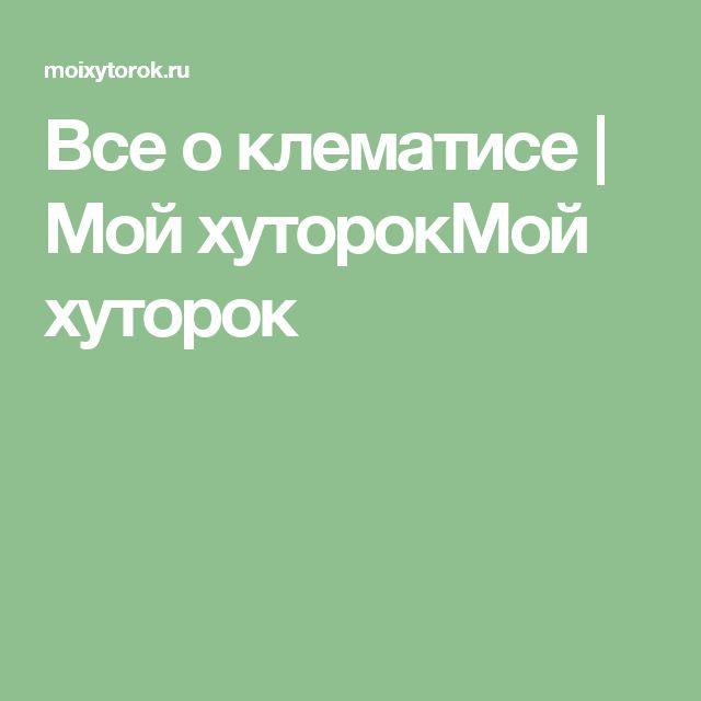 Все о клематисе | Мой хуторокМой хуторок