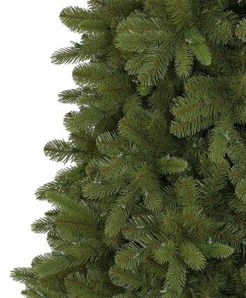 Classic Fraser Fir Christmas Tree | Tree Classics