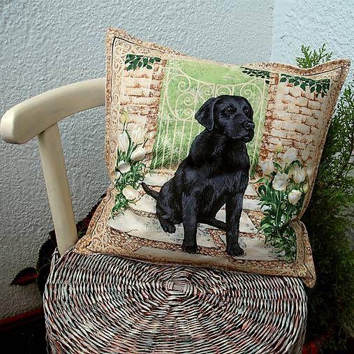 veronica / čierny labrador