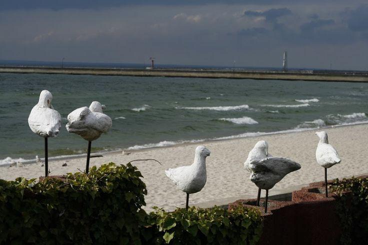 Polish sea by Maciej Zdun