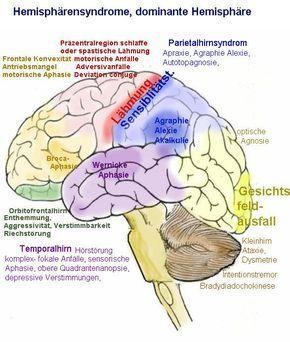 Lähmungen motorische Störungen
