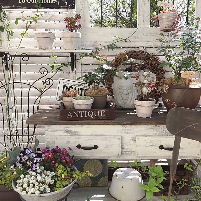 女性で、3LDKの小さな庭/ガーデン雑貨/DIY/ガーデンフェンス/グリーンのある暮らし/玄関/入り口…などについてのインテリア実例を紹介。「今朝の庭の風景♬ ピンクの薔薇が終わって グリーンが主の爽やかな感じに... 花が少なくなっただけだけど(*≧∀≦*) ご近所さんの紫陽花も色付いてきて なかなかいい眺めです❤︎」(この写真は 2017-06-04 12:41:48 に共有されました)