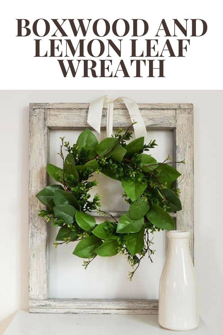 boxwood and lemon leaf wreath perfect for a frame or window #affiliate #farmhouse #modern #home #decor #country #boxwood #leaf #lemon #wreath #frame #window