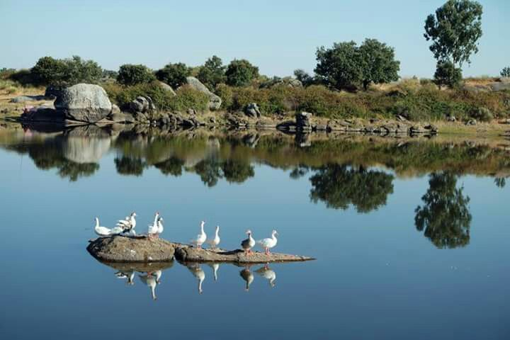 Los Barruecos en Malpartida de Cáceres. #Barruecos #caceres #extremadura #España #spain #turismo #tourism #viajes #travel #travelplace