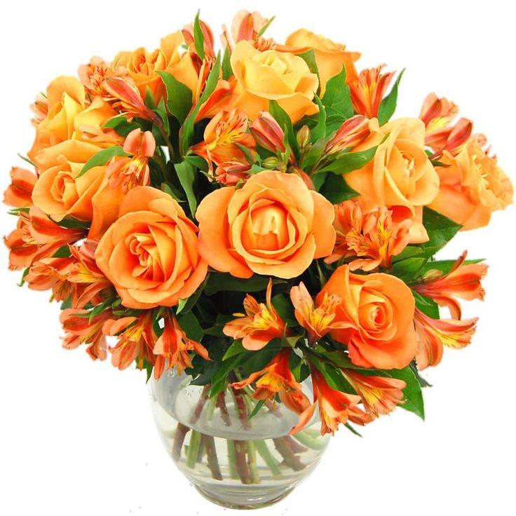 Оранжевые цветы в букетов названия с картинками, цветов прокопьевске