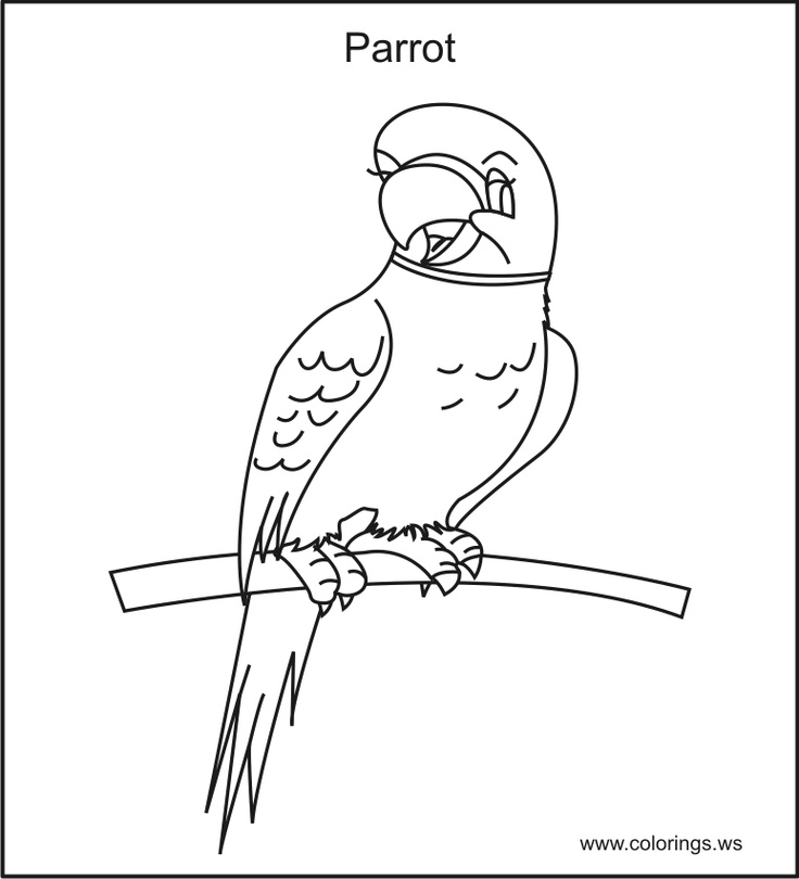 free parrot colorings pages you can print and color